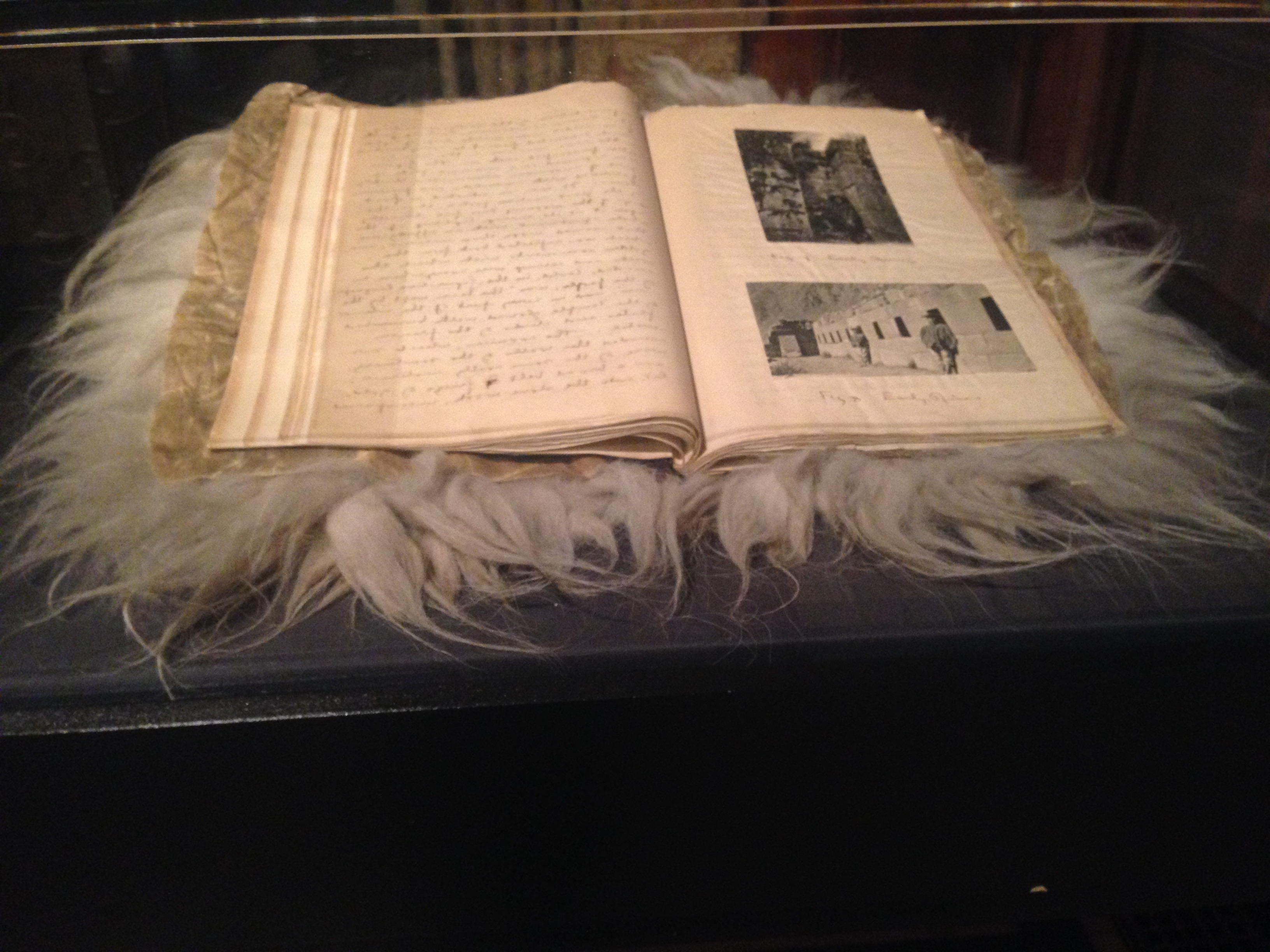 Among the genuinely curious things is collector William T. Taylor's Peruvian travel diary, bound in Llama skin.