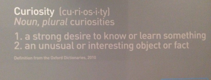 Curiosity and coincidence at Bristol Museum & Art Gallery
